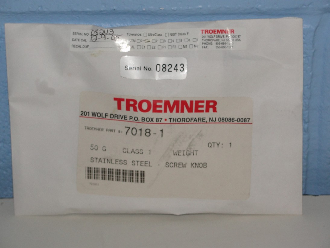 Troemner 50 G Class 1 Stainless Steel Image