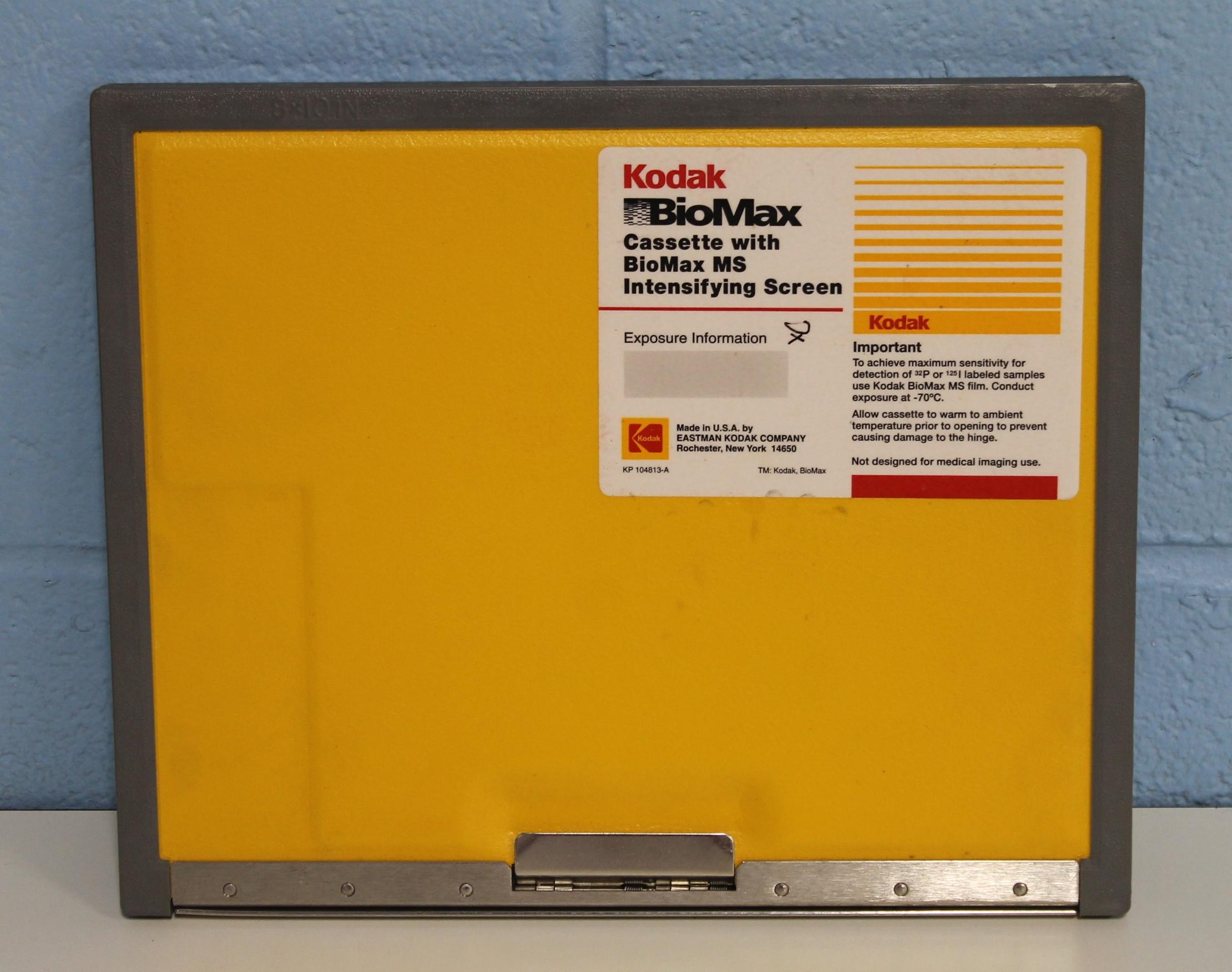 Kodak BioMax MS Intensifying Screen Image