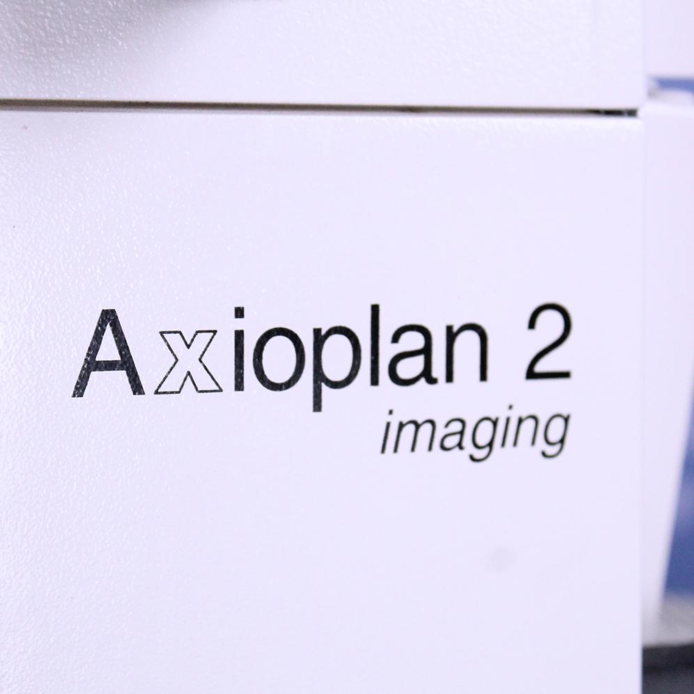 Carl Zeiss AxioPlan 2 Imaging Microscope Image