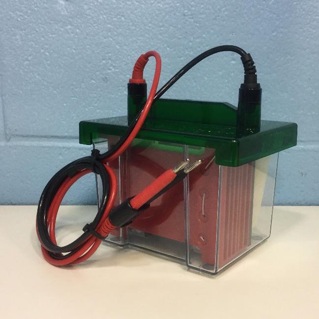Bio-Rad Mini Trans-Blot Cell Image