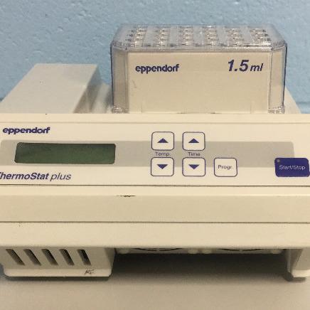 Eppendorf Thermostat Plus Image