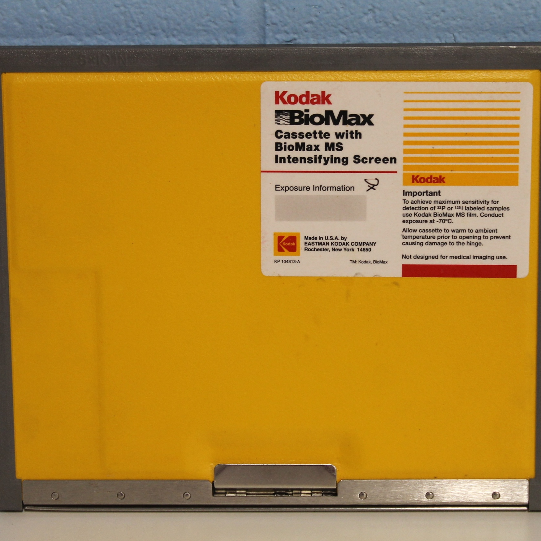 Kodak BioMax MS Intensifying Screen Image