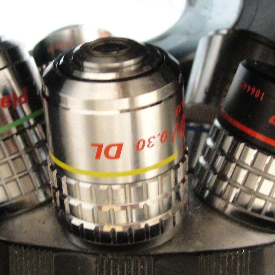 Nikon Diaphot Invert Phase-Contrast Microscope Image