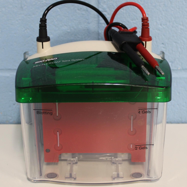 Bio-Rad Mini-PROTEAN Tetra Cell Image