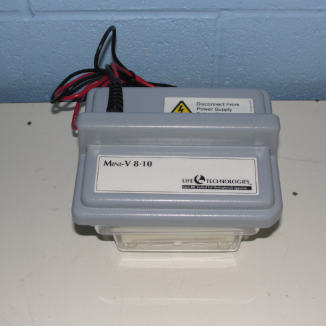 Life Technologies Inc. Mini-V 8-10 Vertical Gel Electrophoresis System Image