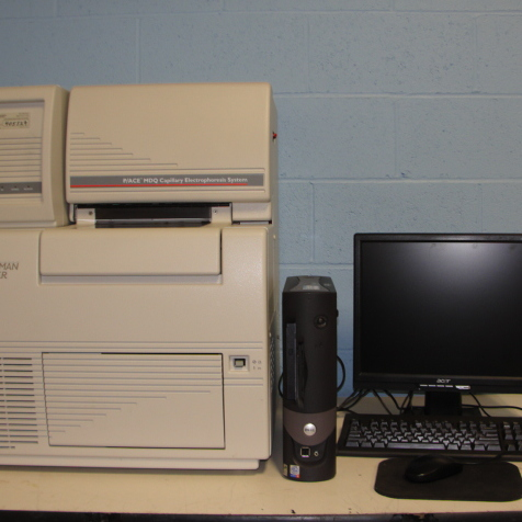 Beckman Coulter P/ACE MDQ Capillary Electrophoresis System Image