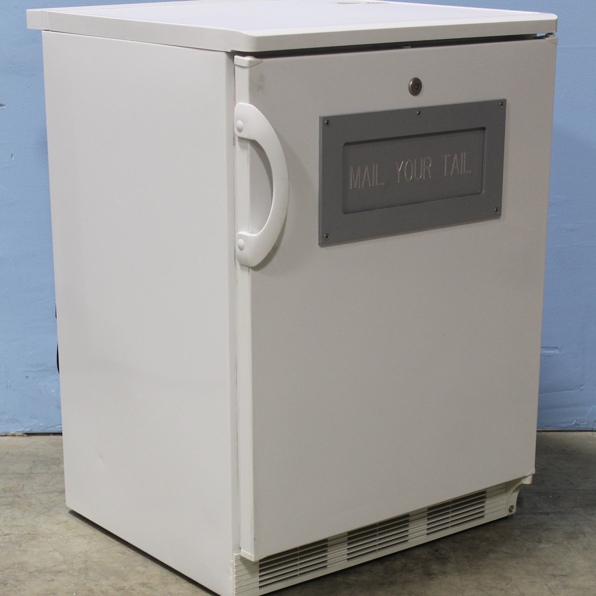 FELIX STORCH, INC. Summit Commercial Series FF7L with Custom Mail Slot Image